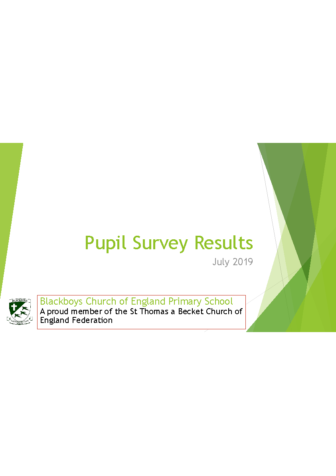 Pupil Survey Results July 2019
