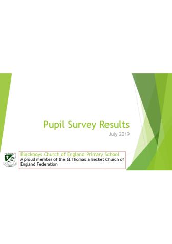 Pupil Survey Results July 2019